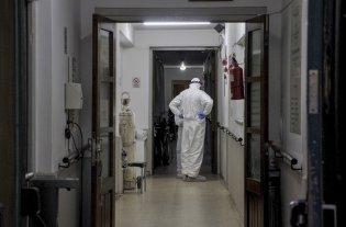 Registraron este domingo 33 nuevas muertes por coronavirus en Argentina -  -