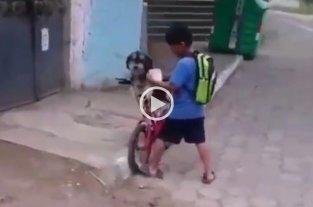 Pura ternura: el nene ecuatoriano que le pone tapabocas a su perrito para hacer juntos los mandados