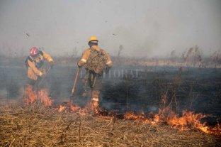 Piden políticas de Estado para frenar incendios en el valle aluvial del Paraná -  -