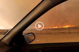 Fuego en Bella Italia: un bombero herido y animales muertos en una quema de grandes dimensiones