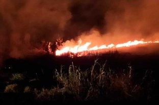 """Incendios en la provincia: """"Nunca vi algo así"""", dijo el jefe de los Bomberos - La mayoría de los hechos se producen en campos y pastizales. El norte de la provincia es el sector más afectado -"""
