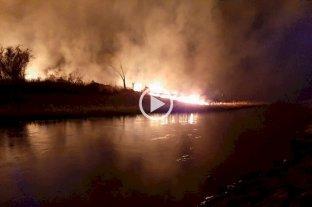 San José del Rincón: incendio forestal en las islas frente al Balneario Municipal -  -