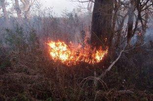 Identificaron a siete sospechosos de provocar un incendio en las islas, dos ya tenían antecedentes - Fuego iniciado por los sujetos identificados por la Agrupación Albatros.