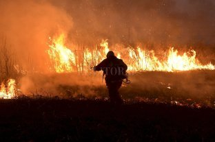 Protestas de ambientalistas en defensa de los humedales - Incendios. Se repiten todos los días en la zona de islas de Santa Fe y afectan al ecosistema. Aquí, la quema del miércoles frente a Santo Tomé. -