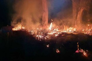 La zona rural de Matilde fue afectada por el fuego -  -