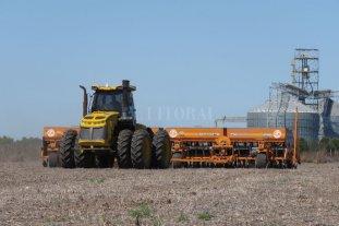 Sin lluvias de 30 a 100 milímetros, no se podrá sembrar maíz