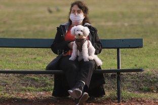 En el país se registraron 113 fallecimientos por coronavirus en las últimas 24 horas -  -
