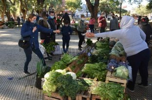 Futuro promisorio para la producción agroecológica de la ciudad de Santa Fe