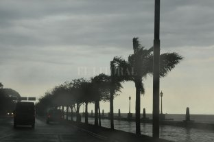 Renovaron un alerta por vientos intensos con ráfagas para el centro y sur de la provincia