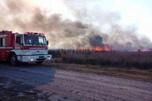 Productores desaprensivos y cazadores furtivos, en la mira por los incendios -  -