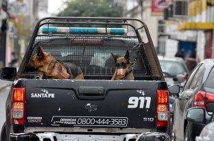 Intentaron robar una camioneta pero los imputaron por cuatro hechos más -  -