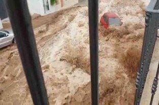 """Las lluvias y el granizo provocaron """"daños innumerables"""" en el sur de España"""