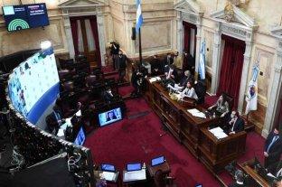 El Senado convirtió en ley el plan de moratoria sin apoyo de la oposición  -  -