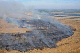 Incendios: agrónomos santafesinos piden responsabilidad social y castigo a los culpables