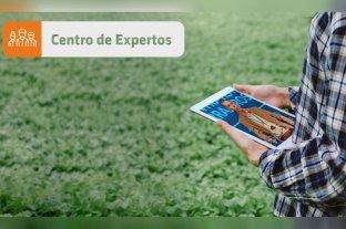 Expoagro Digital: Más de 40 técnicos atenderán consultas en el Centro de Expertos