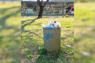 Abandono: los cestos desbordan de basura en la zona del Predio Ferial