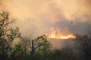 Por las quemas, evalúan prohibir la  circulación náutica en zona de islas
