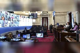 Aspectos centrales del proyecto de ley de reforma judicial aprobado por el Senado