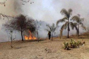 Informe oficial: cinco provincias continúan afectadas por incendios forestales -  -