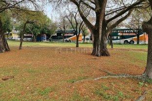 Un espacio verde que luce mejorado