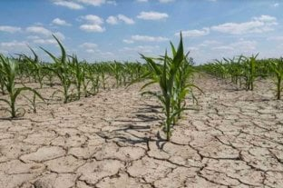 """Impulsan la primera legislación provincial sobre """"cambio climático"""""""