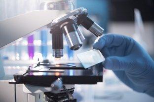 Científicos descubren nuevos genes vinculados al autismo y otras patologías neurológicas -  -