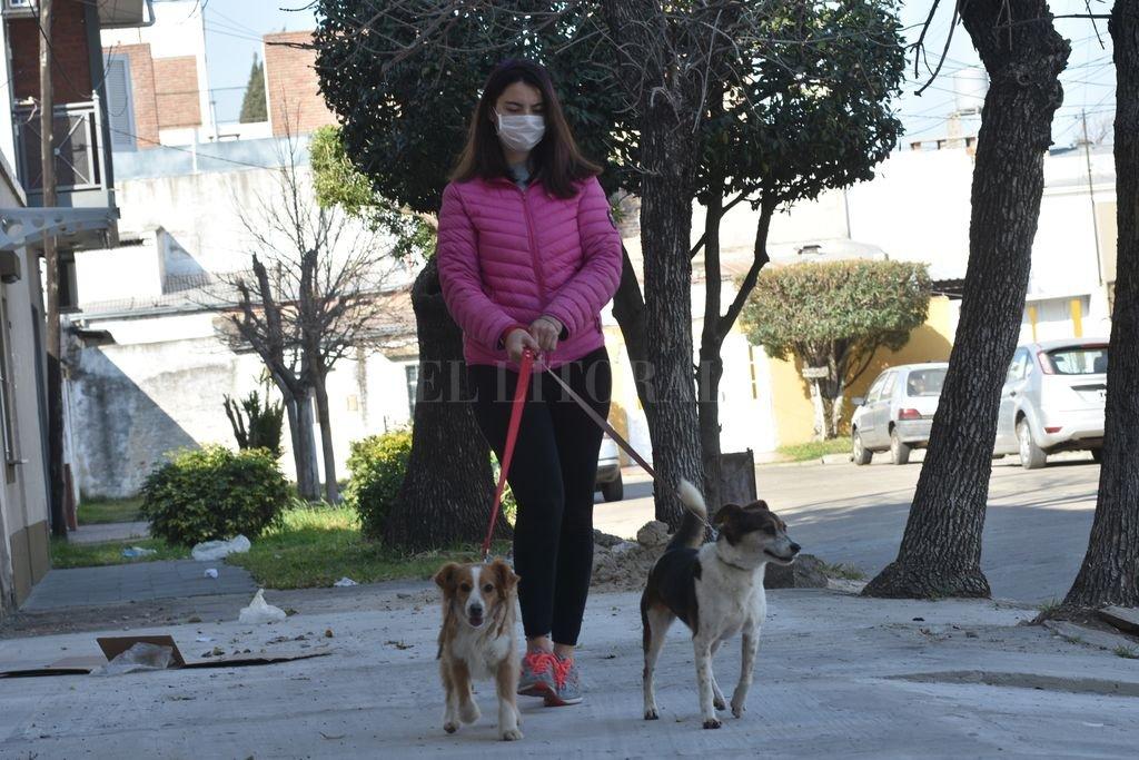Se puede colaborar de muchas maneras; también como hace Agustina cada día cuando saca a pasear a las mascotas de Daniela. Crédito: Flavio Raina