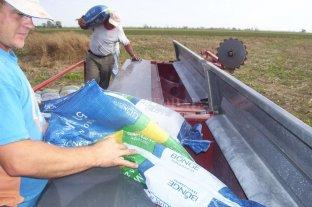 Advierten que puede haber aumentos de precios en insumos estratégicos para el agro