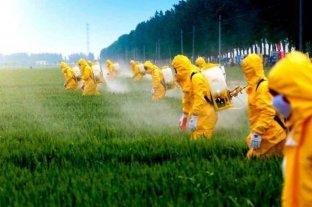 Europa vende a América Latina y África pesticidas que están prohibidos por la Unión Europea