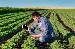 RedES: la iniciativa que busca generar conocimientos sobre sustentabilidad agrícola