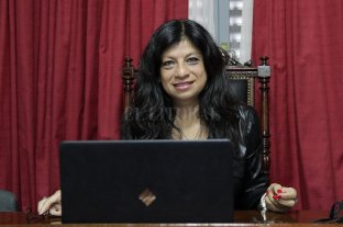 Ley Micaela: el Concejo Municipal de Santo Tomé se capacita en perspectiva de género - Gabriela Solano. -