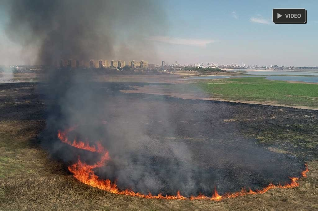 Desde el drone de El Litoral: imágenes impactantes de quemas de pastizales en Santa Fe -  -