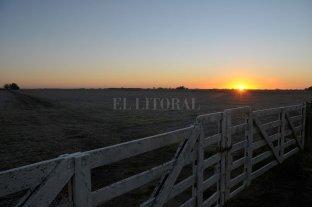 El sector inmobiliario rural experimentó su cuarta suba consecutiva