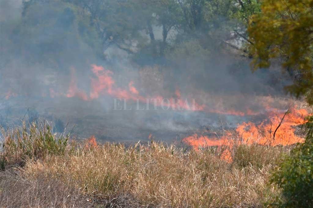 Otra vez fuego a la vera de la Ruta Nacional 168 -  -