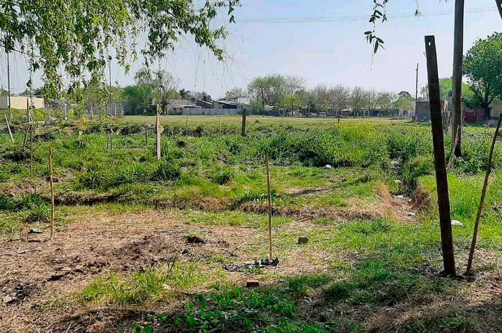 El terreno en cuestión pertenece a la Municipalidad de Santa Fe Crédito: El Litoral