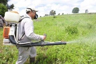 Disponen la prohibición de fumigar en la localidad de Sastre y Ortiz