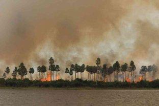 El Pantanal alcanza un nivel récord de incendios de la historia
