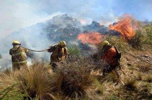 Incendios en Córdoba: alertan sobre un desastre ambiental y solicitan políticas de prevención  -  -