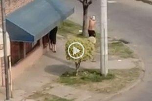 Video: a los tiros, en la calle y a plena luz del día en el barrio Centenario -