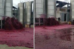 España: litros de vino se desperdician tras reventarse un depósito