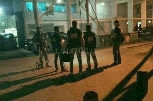 """Tres """"tigres"""" sueltos en barrio Centenario -"""