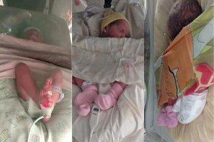 Nacieron las trigemelas idénticas de Mar del Plata