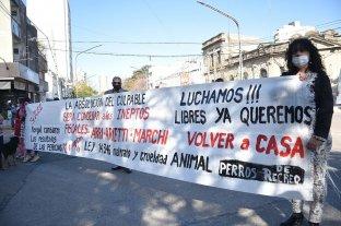 Embargaron e impusieron medidas cautelares a los imputados en la investigación por la muerte de Diego Román