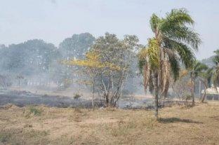 Hallaron un cadáver de una mujer tras apagar un incendio forestal en Corrientes
