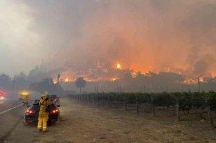 California: un incendio forestal obligó a evacuar un hospital y cientos de hogares en zona vinícola
