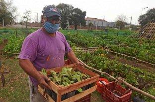 Agricultura urbana: Rosario hace punta en el país con un programa municipal