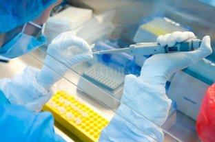 Rusia patentó la segunda vacuna para el coronavirus -  -