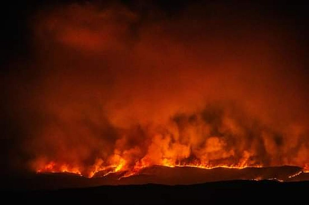 La zona de La Cumbre donde se focaliza el incendio, es un ambiente seco boscoso y el acceso es dificultoso. Crédito: Gentileza