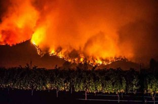 Las llamas siguen avanzando sobre la región vinícola en Californiana