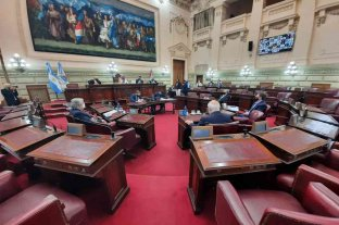 La Legislatura rechazó el fallo que le impide controlar fiscales -  -